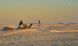 Переход через пустыню Сахара. Путешествие длиной в 1300 км