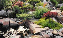 Таинственный водный сад Японии