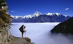 Горы Шираками: наследие букового леса